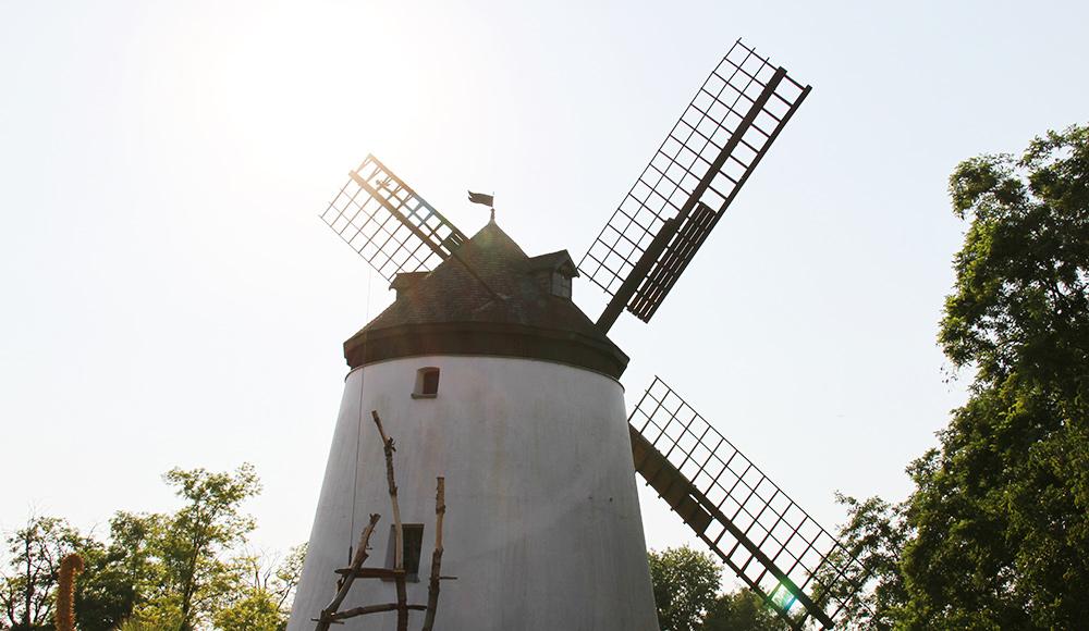 Denkmalgeschützte Windmühle in Podersdorf am See